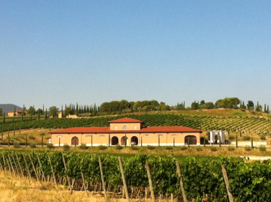 Corte alla Flora, nova aquisição da Frescobaldi