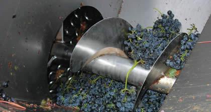 La Imagen del Vino