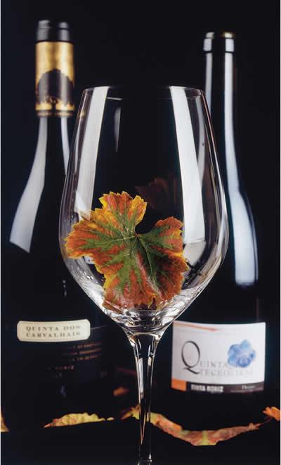 Revista de Vinho - Portugal