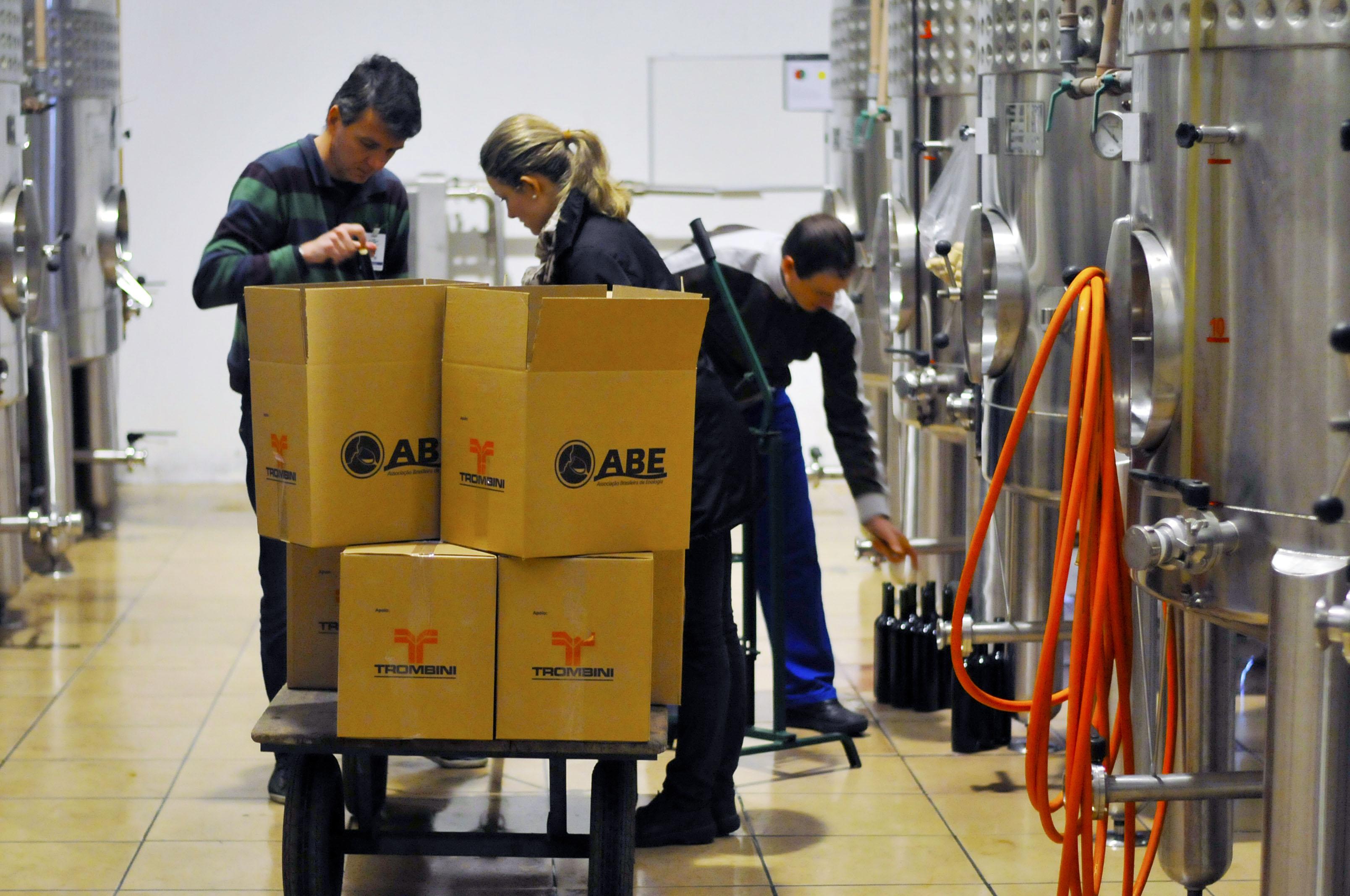 Coleta de amostras Avaliação Nacional de Vinho 2013
