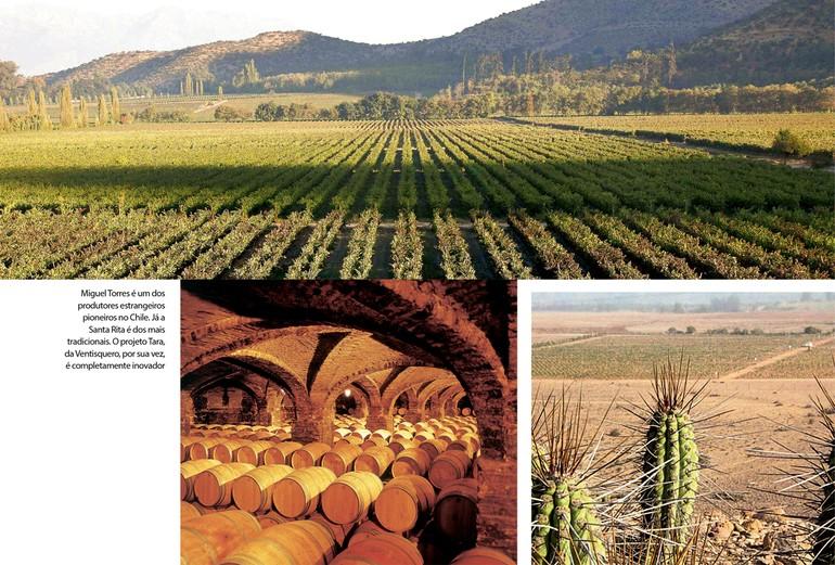 Miguel Torres é um dos produtores estrangeiros pioneiros no Chile. Já a Santa Rita é dos mais tradicionais. O projeto Tara, da Ventisquero, por sua vez, é completamente inovador