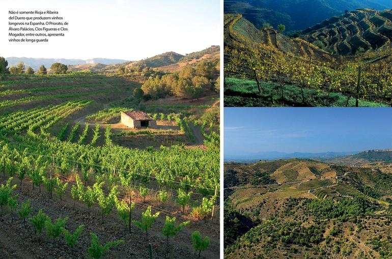 Não é somente Rioja e Ribeira del Duero que produzem vinhos longevos na Espanha. O Priorato, de Álvaro Palácios, Clos Figueras e Clos Mogador, entre outros, apresenta vinhos de longa guarda