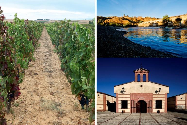 O dinamarquês Peter Sisseck produz um dos vinhos mais cults do mundo, com Tempranillo em Ribera del Duero