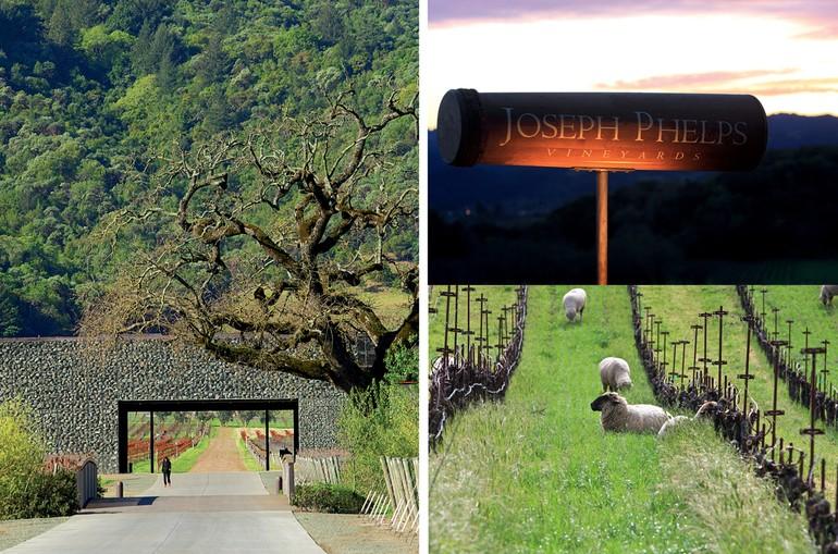 Joseph Phelps adquiriu seus primeiros vinhedos em 1973 e logo se tornou adepto da cultura biodinâmica