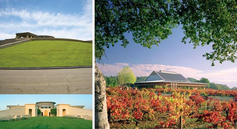 Em 1981, uma caixa do Opus One foi vendida por  US$ 24 mil, o maior valor já pago por um vinho da Califórnia até então