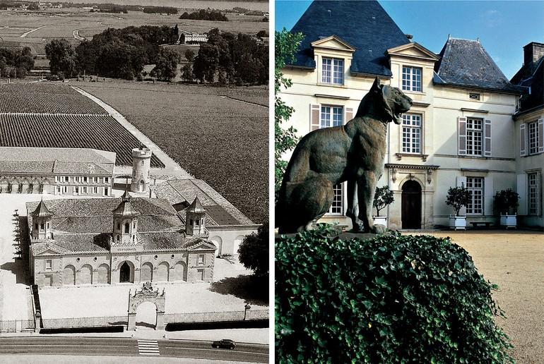 O Château Cos d'Estournel possui 91 hectares de vinhedos plantados com Cabernet Sauvignon e Merlot