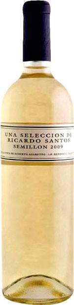 RICARDO SANTOS SÉMILLON 2013
