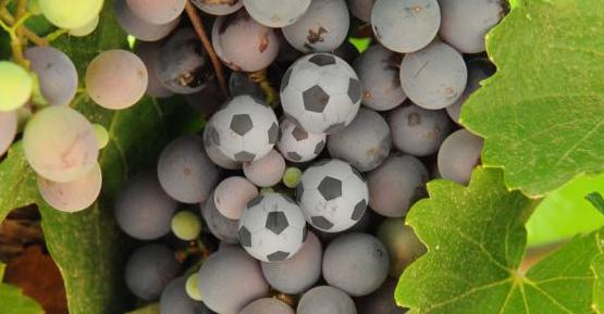 uvas e bolas de futebol