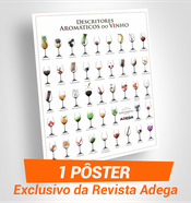 POSTER DESCRITORES AR