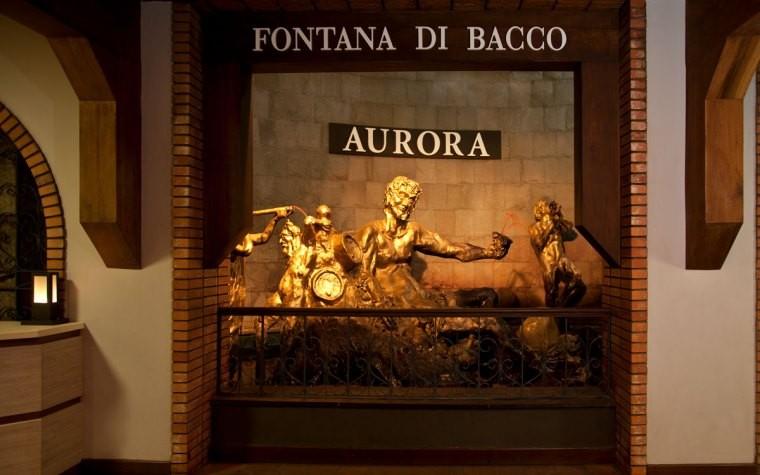 Vinícola Aurora, grandes rótulos aliados à responsabilidade social ·  Revista ADEGA
