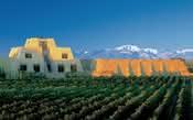 10 regiões vitivinícolas que você precisa visitar