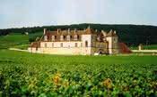 Champanhe e Borgonha se tornam 'Patrimônio da Humanidade'