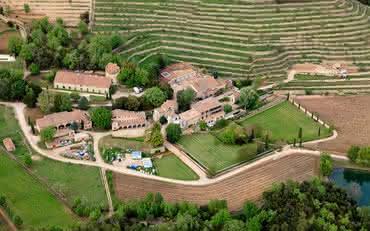 A vinícola de Brad Pitt e Angelina Jolie